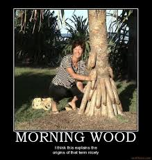Morning Wood Meme - 128398116 added by zenyn at morning wood