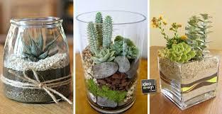 mini terrarium diy here are 20 ideas to inspire video tutorial