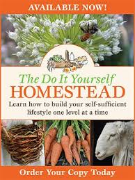 Backyard Homestead Book by Backyard Bread And Pizza Oven Diy Homestead And The Bee Friendly