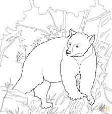 care bears coloring sheets printable black pages bear pictures