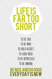 Life Is Short Meme - life is far too short the daily quotes