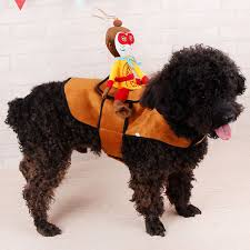 Halloween Pet Costume Funny