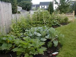 Urban Veggie Garden - home veggie garden descargas mundiales com