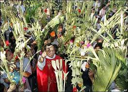 palms for palm sunday holy week trivia i palm sunday iloilo mass