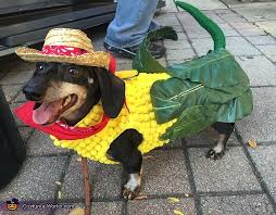Corn Halloween Costume Dog Costume