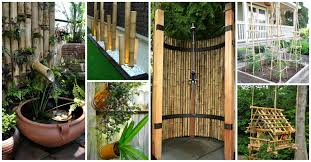 fantastic ways to decorate your yard with bamboo trees