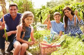 the family garden community health focus ceap