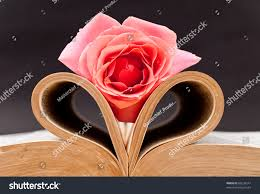 pink rose heart folded book stock photo 60234247 shutterstock