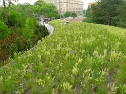 asla 2013 professional awards brooklyn botanic garden visitors
