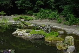 Pflanzen Fur Japanischen Garten Japan Garten Kultur Plant Und Gestaltet Japanische Gärten Und