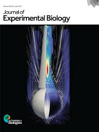 oceans of oxygen gone journal of experimental biology