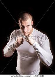 boxer dog in boxing gloves boxer man stock images royalty free images u0026 vectors shutterstock