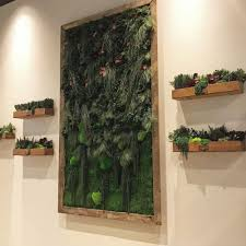 flowerbox wall gardens natural wall gardens preserved plants