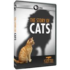 amazon dvd calendar black friday shop pbs org purchase dvds series gifts u0026 more to support pbs