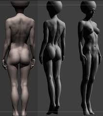 Female Body Reference For 3d Modelling 84 Best Anatomy Reference Images On Pinterest Anatomy Reference