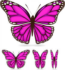 butterfly wings vector free vector in encapsulated postscript eps
