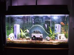 unique caving aquarium decoration themes home aquarium design