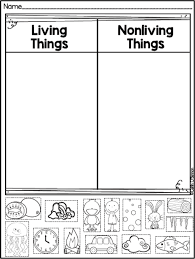 Characteristics Of Living Things Worksheet Middle Freebie Living And Non Living Things Sort Teaching Ideas