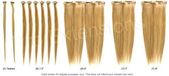 1 inch of hair 20 inch clip on hair extensions standard pro extensions