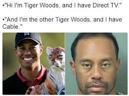 Tiger Woods Memes - hi i m tiger woods and i have direct tv tiger woods mugshot