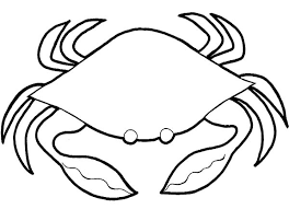 Soft Shell Crab Coloring Page Soft Shell Crab Coloring Page Crab Coloring Page