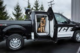 Ford F150 Truck Safety - 2016 ford f150 ssv police dog k9 unit the fast lane truck