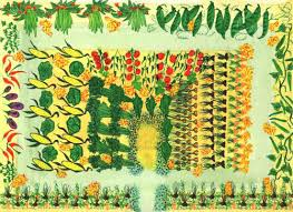 free vegetable garden layout templates innovative companion plants