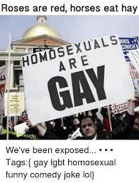 Gay Horse Meme - roses are red horses eat hay homosexuals xual nnis nich are gay