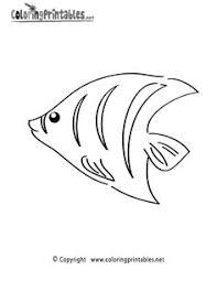 clown fish drawings design clipart panda free clipart images