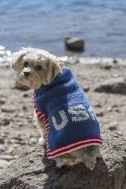203 best knit and crochet dog sweaters images on pinterest