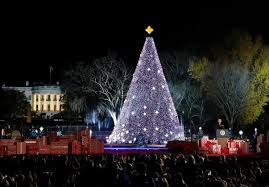 the national tree lighting is thursday prepare for a