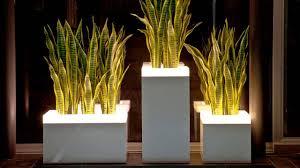 100 design planters pots planters u0026 containers southern