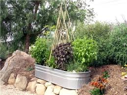 kitchen gardening ideas how to make kitchen garden in pots popular of patio vegetable