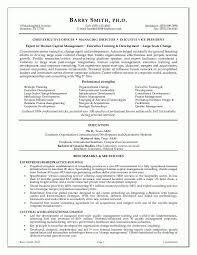 free executive resume hitecauto us