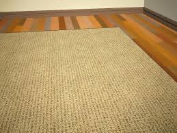 Clean Area Rugs Picture 7 Of 40 Best Way To Clean Area Rugs New Places That