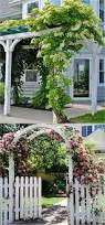 3098 best gardens and outdoor living images on pinterest