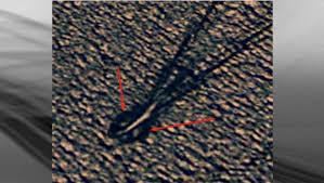 Google Maps Ottawa Ontario Canada by Ogie Is That You Kelowna News Castanet Net