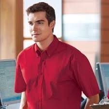 workspace friendly red house rh62 slim fit non iron dress