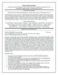 free executive resume templates executive resume templates free sles professors finance marketing