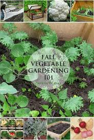 17 best images about garden vegetables on pinterest gardens