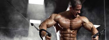 best chests in the bodybuilding healthkart connect