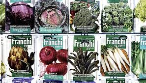 how to buy vegetable seeds garden guides