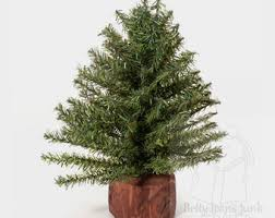 12 small pine tree cake toppers plastic evergreens woodland