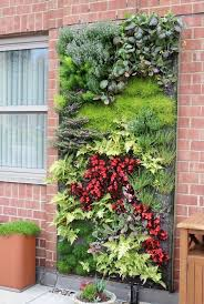 Wall Planters Indoor by Best 20 Vertical Garden Wall Ideas On Pinterest Wall Gardens