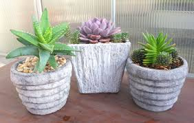 Cactus Planters by Rustic Succulent Containers Geek Gardens