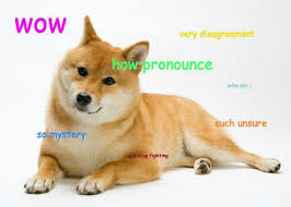 Doge Meme Template - such doge meme generator doge best of the funny meme