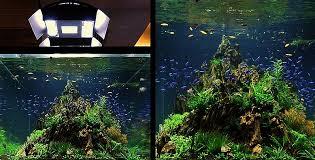 Aquascape Tank Bubbles Aquarium Aquascapes Tank Setups Projects