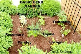 five great garden ideas