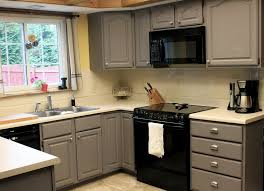 ideas for redoing kitchen cabinets redoing kitchen cabinets before and after home design ideas