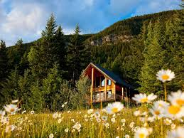 2 bedroom luxurious log cabin in golden canada select 4 approved